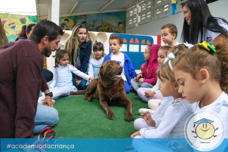 Visita do Bono Surf Dog